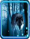 waptrick.one Wolves Nightlive Wallpaper